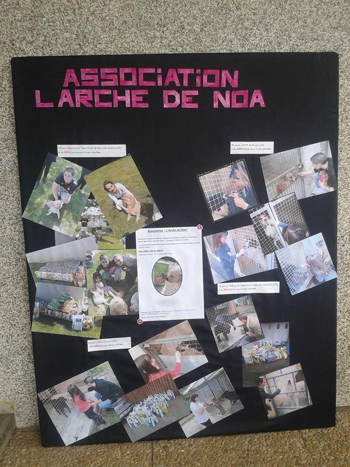 "Association ""L'Arche de Noa"""